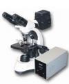 Микроскоп бинокулярный люминесцентный МС300 (FS)